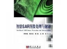 《智能SAR图像处理与解释》