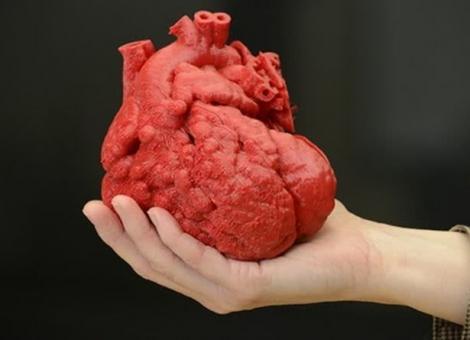 3D 打印正在手术台上进化,几百美元就可制作出器官模型