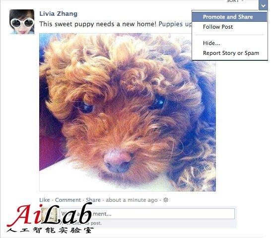 Facebook推新功能 用户可付费推广好友消息