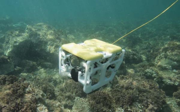 机器人,Nido,水下无人机