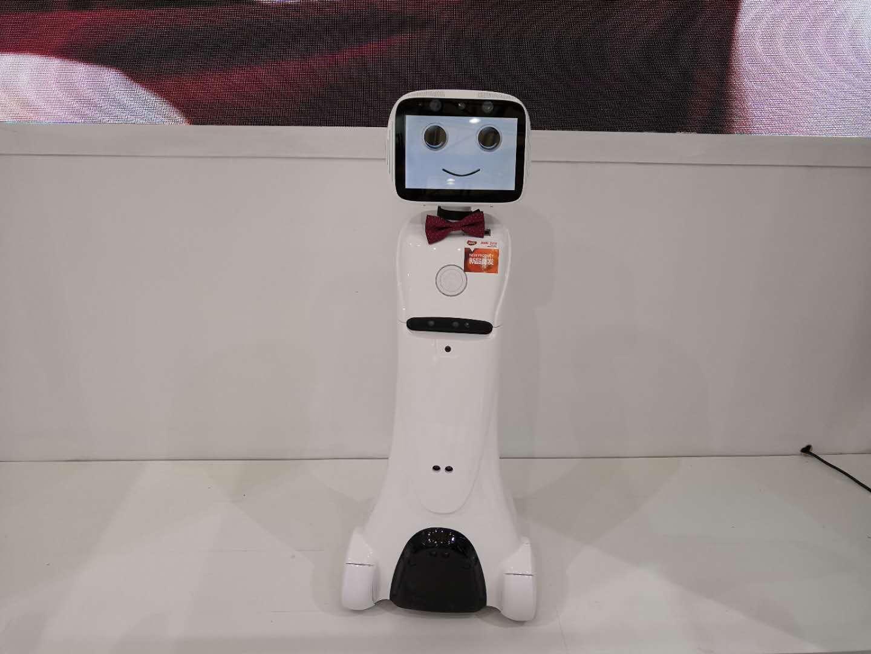 机器人、艾米