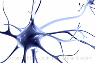 人工神经元的工作原理_神经元
